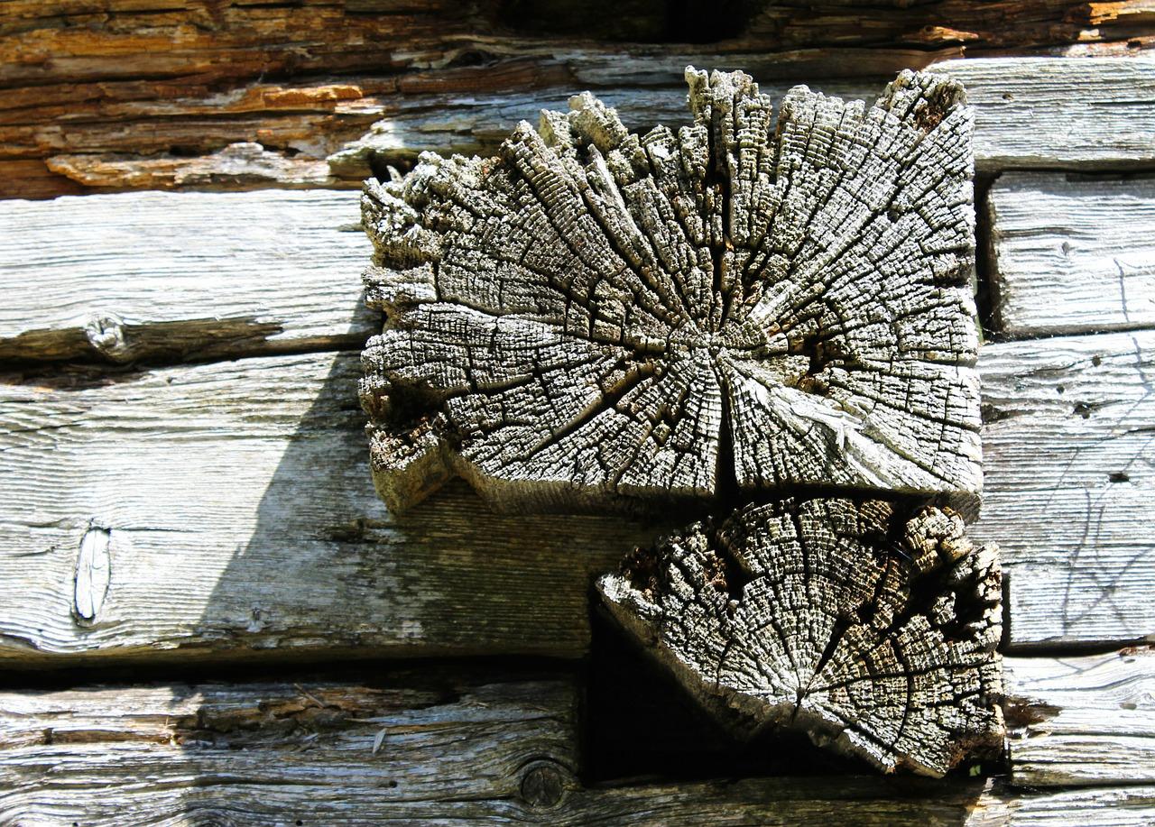 Log cabin2