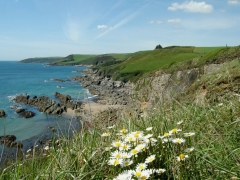 The stunning coast path