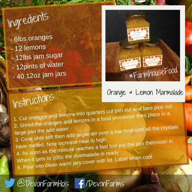 Orange and Lemon Marmalade