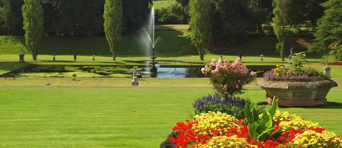 Bicton garden