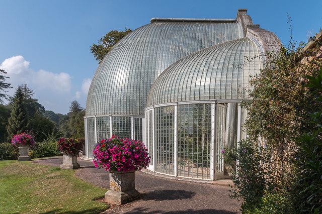 Bicton glasshouse