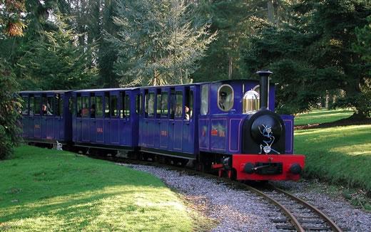 Bicton railway