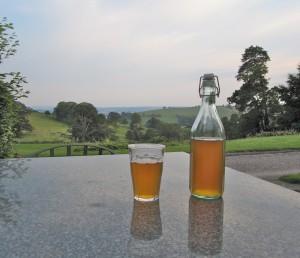 Cider bottles and view- Fursdon