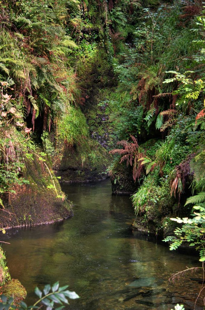 Lydford Gorge river