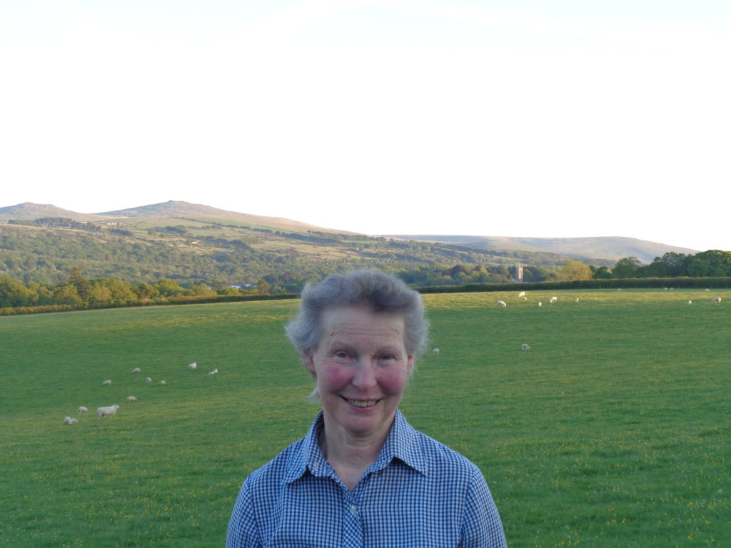 Ruth Maile, Okehampton, East Hook Holiday cottages