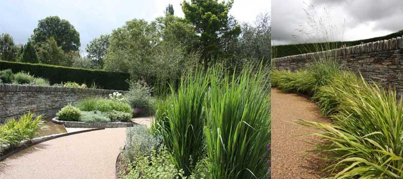 Long grasses in Rosemoor's new garden