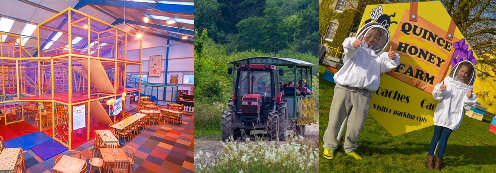 Activities to take part in at Quince Honey Farm, North Devon