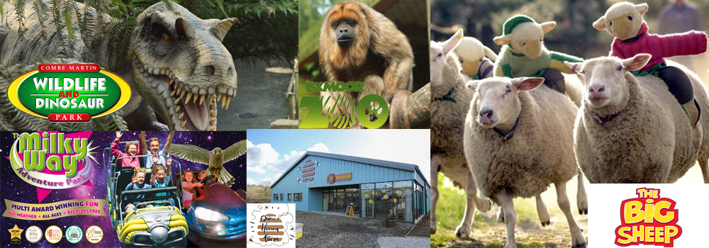 Fun activities for children in North Devon including, The Big Sheep, The Milky Way, Quince Honey Farm, Exmoor Zoo and The Milky Way.