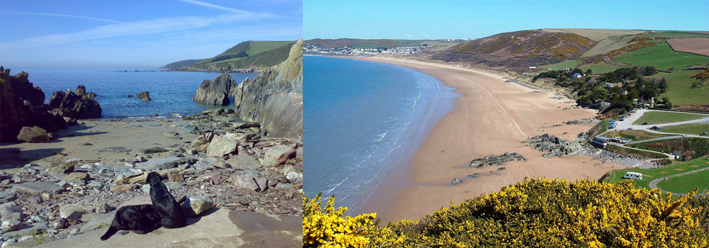 Come and walk your dog at dog friendly beaches in North Devon.